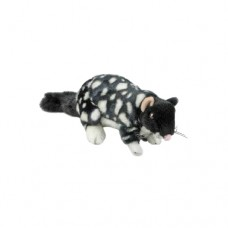 Polka the Eastern Quoll - A Bocchetta Plush Toy