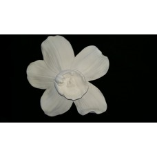 Flower Wall Art - White Orchid