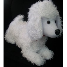 Winter The White Poodle