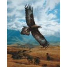 Soaring on High by Philip Farley - Limited Edition Print