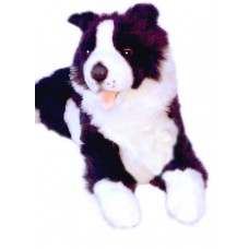 Starsky the Border Collie - A Bocchetta Plush Toy Dog