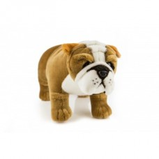 Baxter the Bulldog - a Bocchetta Plush Toy Dog