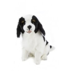 Chester the King Charles - a Bocchetta Plush Toy Dog