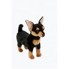 Salsa the Chihuahua - A Bocchetta Plush Toy Dog