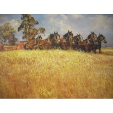 Harvesting The Wheat By Darcy Doyle - Limited Edition Print