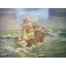 H.M.S Endeavour By Darcy Doyle - Limited Edition Print
