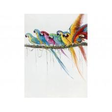 Long Tail Parrots